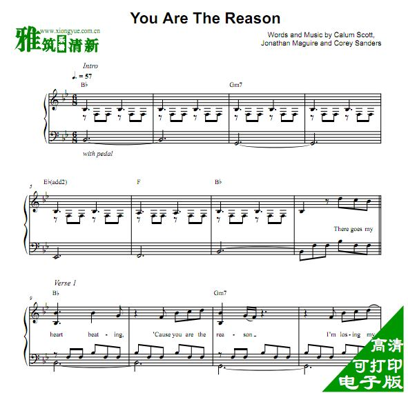 Calum Scott - You Are The Reason 钢琴谱